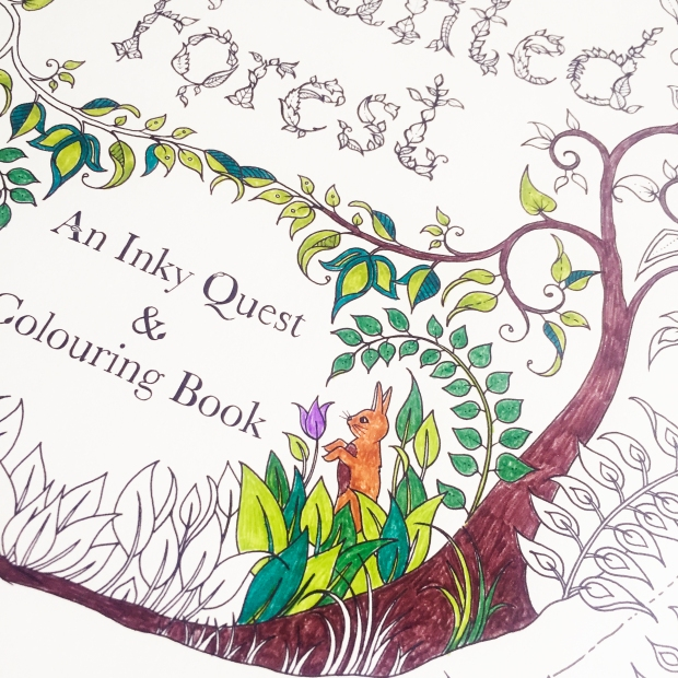 Enchanted Forest Colouring Book Sarah Hurley