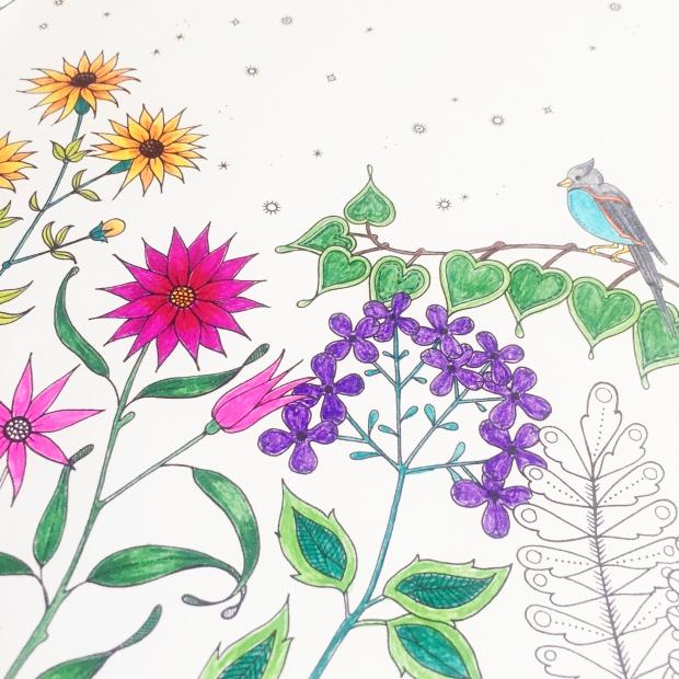 Secret Garden Colouring Book Sarah Hurley