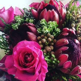 sarah-hurley-live-flowers
