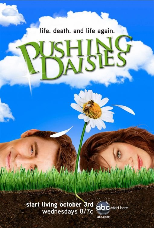 Sarah Hurley Blog Box Sets Pushing Daisies
