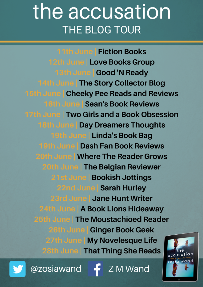 The Accusation blog tour (1).png